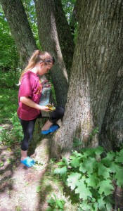 Geocaching in the Park.