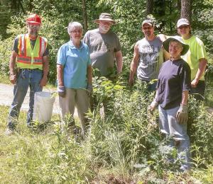 Mairi 20170615 Tree Planting2cropped